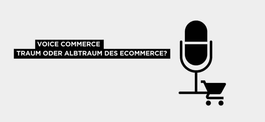 Voice Commerce Blogbeitrag